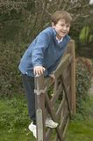 Happy boy on a gate Stock Images