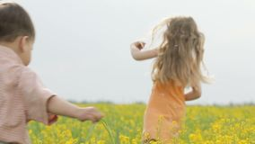 Happy boy and girl having fun, running around the meadow with yellow flowers. Brother and sister playing in the canola field. Happy boy and girl having fun stock footage