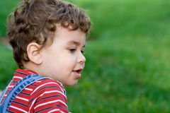 Happy boy on grass. Young boy playing in the yard Stock Photos