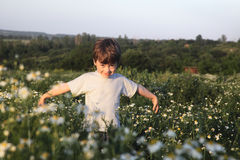 Happy boy on green field Royalty Free Stock Photos