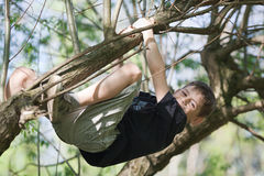 Happy boy hanging in a tree Royalty Free Stock Image