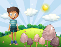 A happy boy at the hill with mushrooms Royalty Free Stock Images