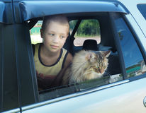 Happy boy and his companion cat in the car.  Royalty Free Stock Image
