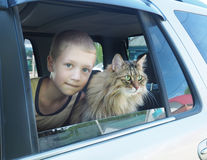 Happy boy and his companion cat in the car.  Royalty Free Stock Photo