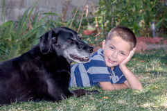 Happy boy and his dog Stock Images