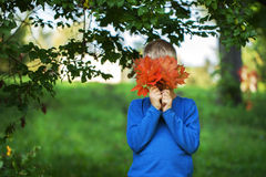 Happy  boy  holding bouquet of maple orange leaves on the green Stock Photos