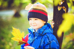 Happy boy holding colorful leaves in autumn Royalty Free Stock Photos