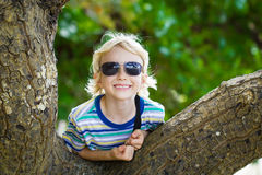 Happy boy on holiday resting on a tree. Happy, exploring child in sunglasses resting on a tree royalty free stock photos