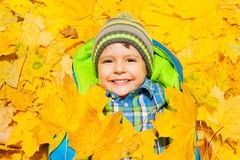 Happy boy laying in orange maple leaves Royalty Free Stock Image