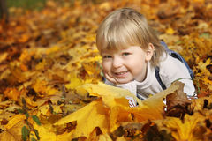 Happy boy in leaves of autumn Royalty Free Stock Images