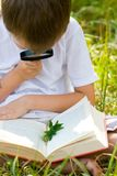 Happy boy with a magnifying glass and a book Stock Photography