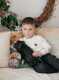 Happy boy with mather near Christmas tree. With feeding black vietnamese piglet. Concept of the Chinese New Year 2019 of the Pig royalty free stock photography