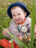Happy boy on the meadow. Happy smiling kid resting on the dandelion meadow with two four front teeth Stock Images