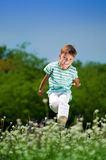 Happy boy on meadow Royalty Free Stock Images