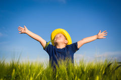 Happy boy  in the middle of wheat fields Royalty Free Stock Photos