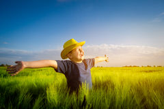 Happy boy  in the middle of wheat fields Stock Photos
