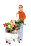 Happy boy with milk and groceries Stock Images