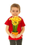 Happy boy offering flowers Royalty Free Stock Image