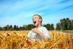 Happy boy outdoor Stock Photos
