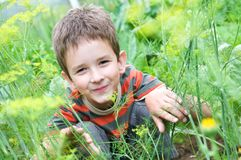 Happy boy outdoors Royalty Free Stock Image