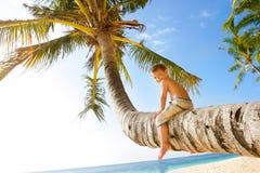 Happy boy on palm Royalty Free Stock Image