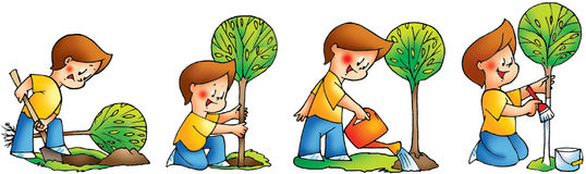 Happy boy planting a tree steps Stock Images