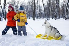 Happy boy playing with dog or husky outdoors in winter day stock photos