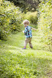 Happy boy playing outside Royalty Free Stock Photo