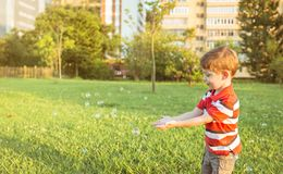 Happy boy playing with soap bubbles in the park. Happy cute boy playing to catch soap bubbles in the park Royalty Free Stock Photography