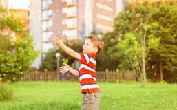 Happy boy playing with soap bubbles in the park. Happy cute boy playing to catch soap bubbles in the park Stock Photo