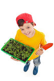 Happy boy ready to plant spring seedlings Royalty Free Stock Image