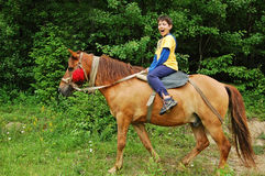 Happy boy riding a horse. In the wood Royalty Free Stock Images