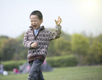 Happy boy running on the grass Stock Images