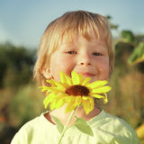 Happy boy with sunflower Royalty Free Stock Images