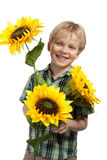 Happy boy with sunflowers Stock Photos