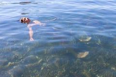 Happy boy swimming in the sea Stock Image