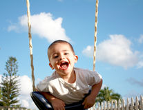 Happy boy on swing Stock Images