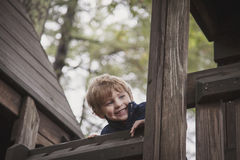 Happy boy in tree house stock photo