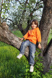 Happy boy on tree Royalty Free Stock Photo