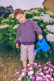 Happy boy watering flowers in the garden Stock Images