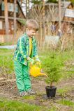 Happy boy watering a sapling tree stock photos