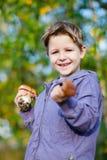 Happy boy with wild mushrooms Stock Image