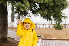 Happy boy in a yellow cloak with a hood pulling a branch of a gr stock photo