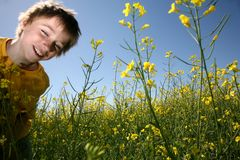 Happy boy in yellow field Royalty Free Stock Image
