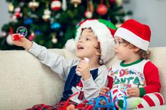 Happy boys playing with Christmas tree in the background royalty free stock photo
