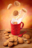 Happy Breakfast with cookies and milk. Delicious cookies falling into a cup of milk with big splash Stock Photos