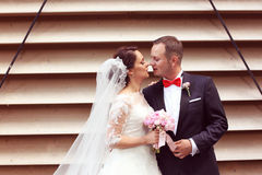 Happy bridal couple embracing Stock Photo