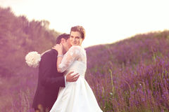 Happy bridal couple in lavander fields Stock Photos