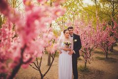 Happy bridal couple in park Royalty Free Stock Image