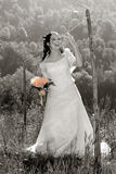 Happy Bride. Young bride posing in the wedding day Royalty Free Stock Photography